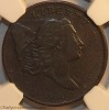 1794 C1a R3 Liberty Cap Half Cent NGC VF20 Mark Palmer Collection